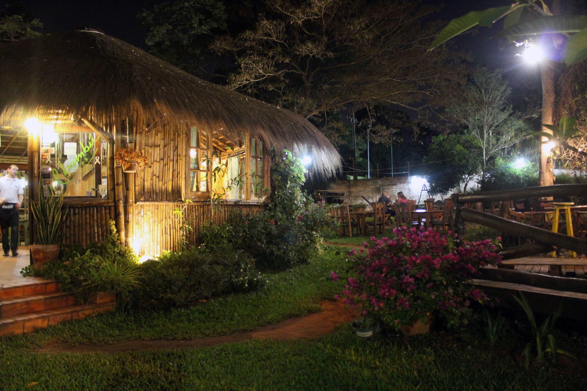 Il Bambú