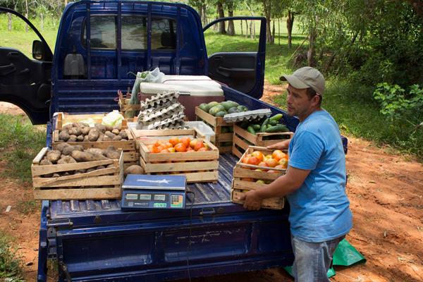 Huertas Online en Paraguay: 9 Mercados que reparten sus productos agro-ecológicos a domicilio | Frugalísima